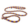 Purple and Gold Rope Slip Leash For Dogs