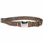 Leopard Skin Premium Metal Buckle Dog Collar