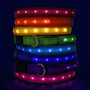 Light Up Hot Dog Safety Collar - Solid Colors