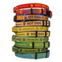 Personalized Light Up Dog Collar