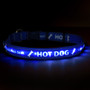 Personalized Light Up Hot Dog Safety Collar