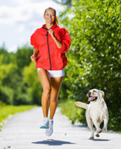 Five Exercises You Can Do With Your Dog