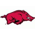 University of Arkansas Dog Products