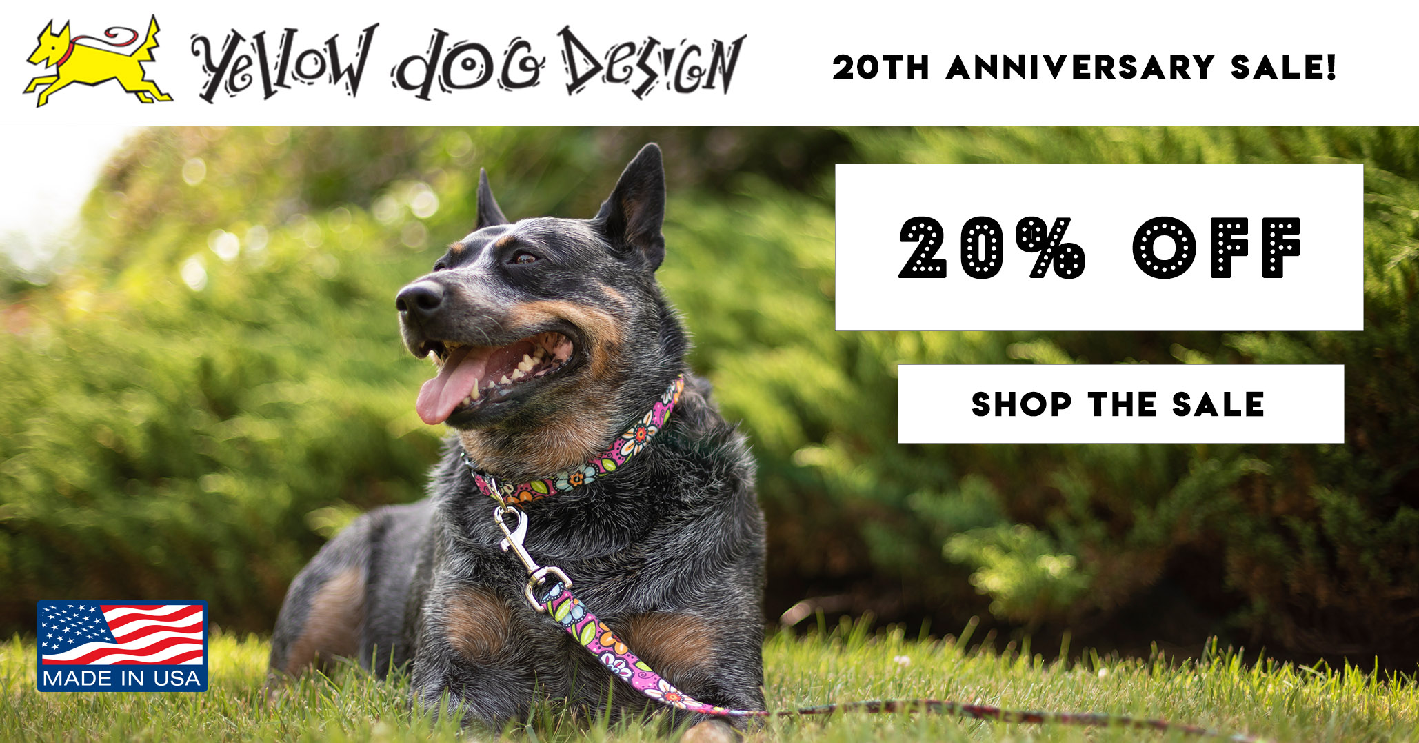 3c7a7add0f7b Personalized Dog Collars, Harnesses, ID Tags & Pet Essentials - Free  Shipping $30+