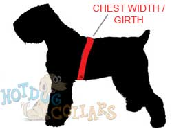 dog-harness-sizing.jpg