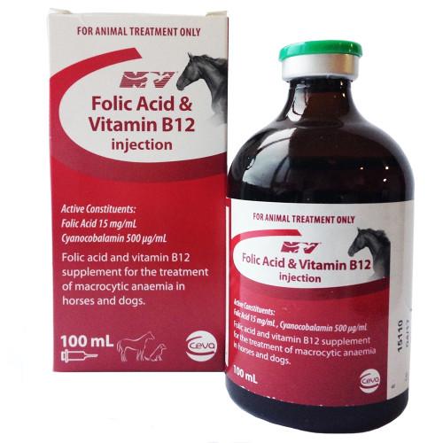 Folic Acid & Vitamin B12