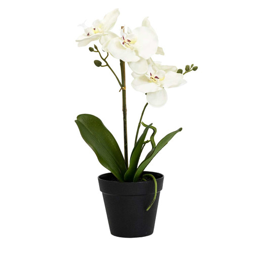 Potted Faux White Orchid Bonsai by Linens & More