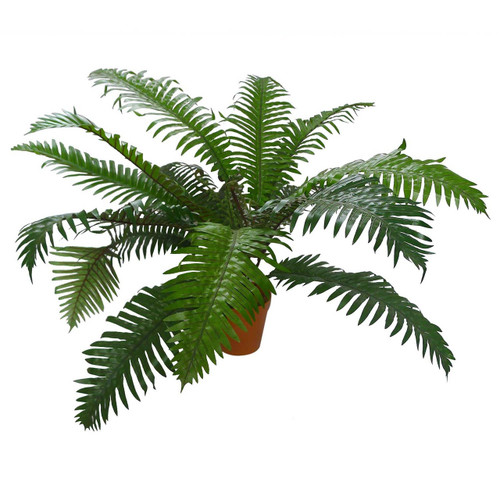 Potted Faux Fern by Linens & More