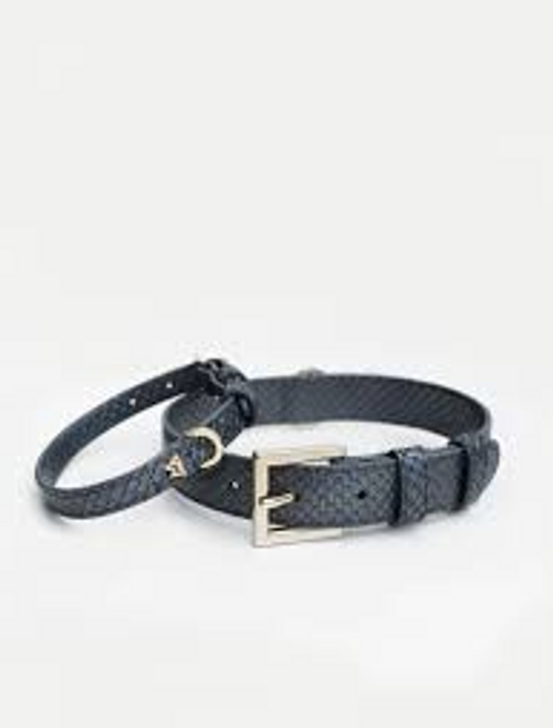 KW K9 COLLAR SMALL