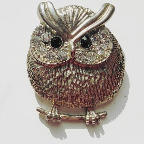 Owl brooche