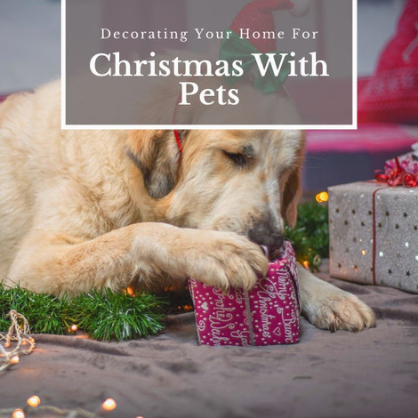 Decorating Your Home For Christmas With Pets