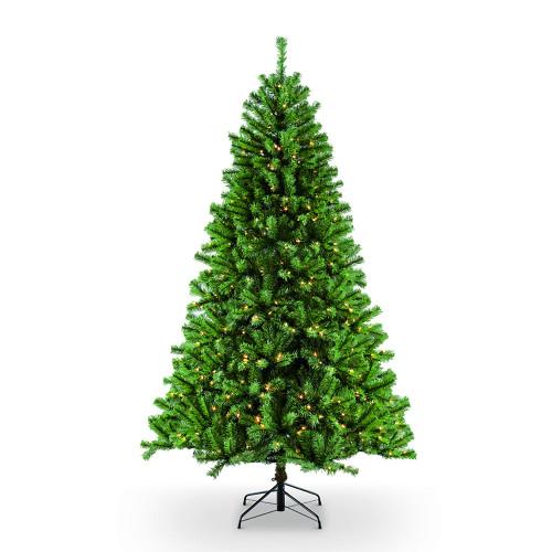 6.5' Pre-Lit Northern Fir Artificial Christmas Tree, Clear Lights