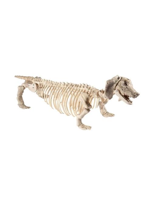 "54"" Ivory Dachshund Dog Skeleton Prop Halloween Decoration"