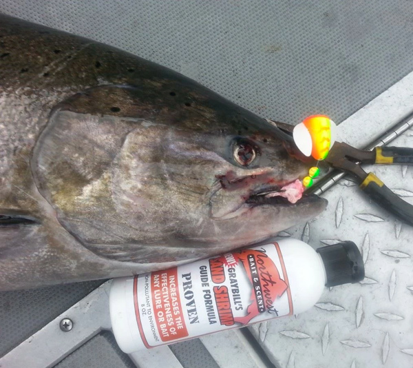 Fishing Gallery Image