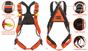 Kong Sierra Duo ANSI Full Body Harness Break Down