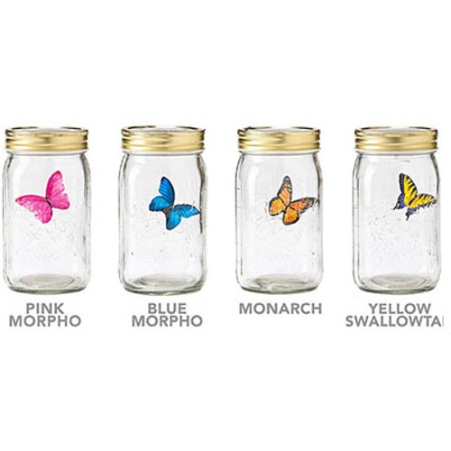 Butterfly In A Jar With LED Light
