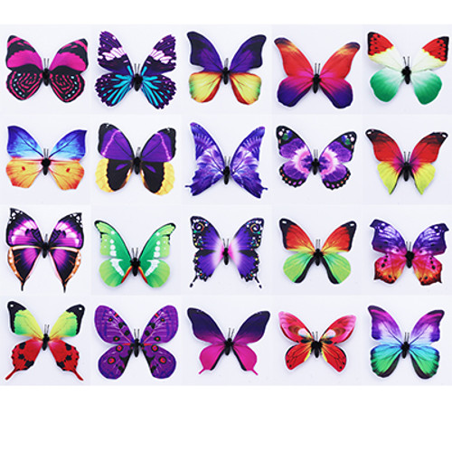 Neon Butterfly Magnet With Bonus Butterfly on Card