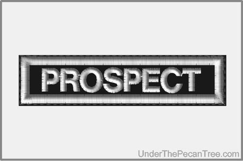 PROSPECT MOTORCYCLE CLUB RANK AND POSITION