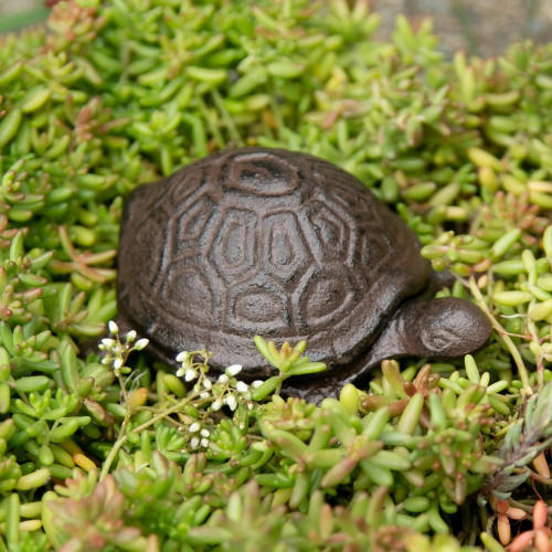 Turtle Cast Iron Outdoor Hide A Key Holder