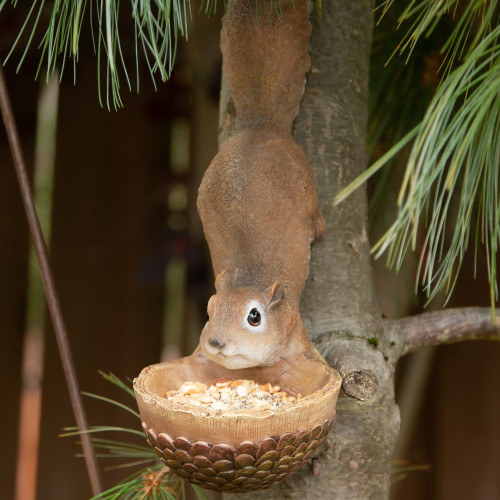 Scurrying Squirrel Wall or Tree Mounted Bird Feeder