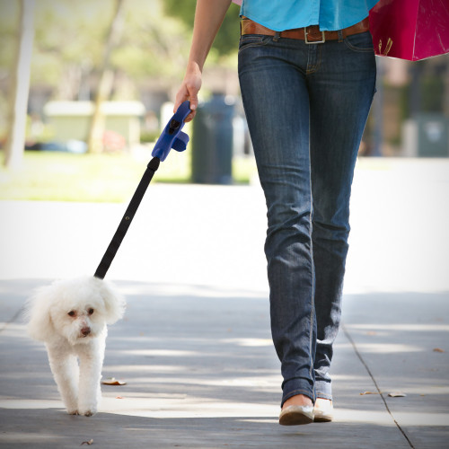 Retractable Blue Dog Leash with Built in Waste Bag Dispenser