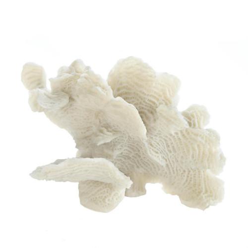 White Coral Decorative Table Decor