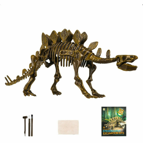 Stegosaurus Dinosaur Skeleton Fossil Excavation Kit Age 4+