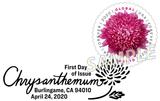 Chrysanthemum Pictorial Postmark