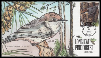 3611d / 34c Brown-Headed Nuthatch : Nature of America Series 2002 Collins Hand-Painted FDC