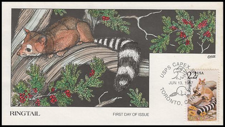 2302 / 22c Ringtail 1987 Collins Hand-Painted First Day Cover
