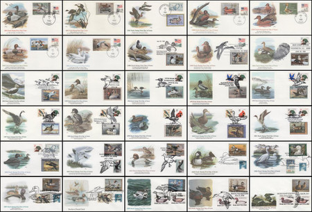 RW49 - RW78 / Group of 30 Different Duck Stamp 1982 - 2011 Fleetwood FDCs