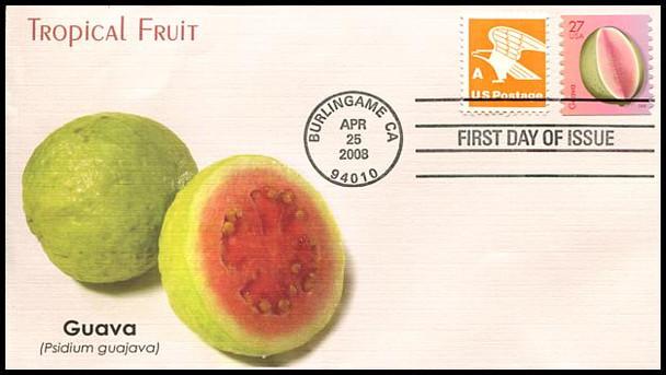 4258 - 4262 / 27c Tropical Fruits Coil Set of 5 Fleetwood 2008 FDCs