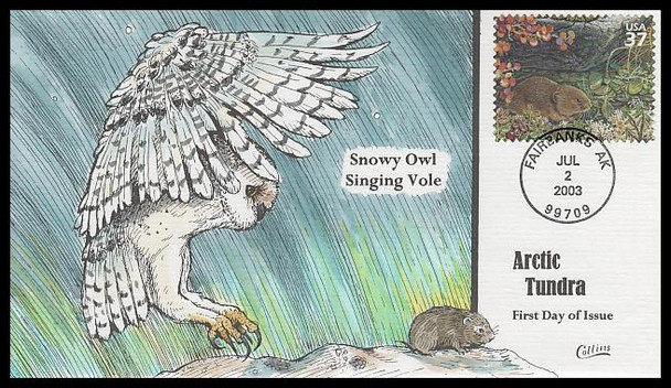 3802j / 37c Singing Vole : Nature of America Series 2003 Collins Hand-Painted FDC