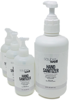 Sauberwell Hand Sanitizer Kit