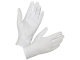 Sanitizing Gloves 4pk