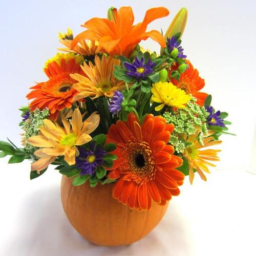Pumpkin Bouquet (Premium)