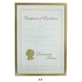 Gold Effect Surround Document A4 Size Frame