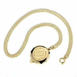 "SOS Talisman Gold Plated Pendant  On 22"" chain"