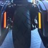 Can Am Dual Color Mega Plasma Rods by Custom Dynamics