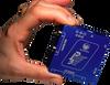 Pegasus Pocket Powerbox Micro