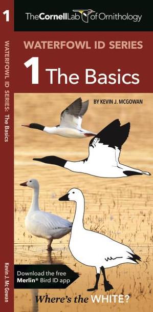 Waterford Press Waterfowl ID Series:  1 The Basics