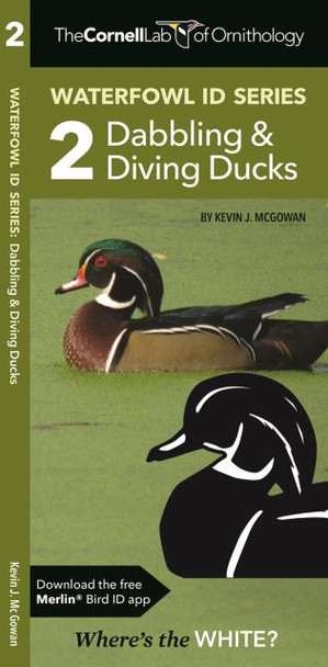 Waterford Press Waterfowl ID Series:  2 Dabbling & Diving Ducks