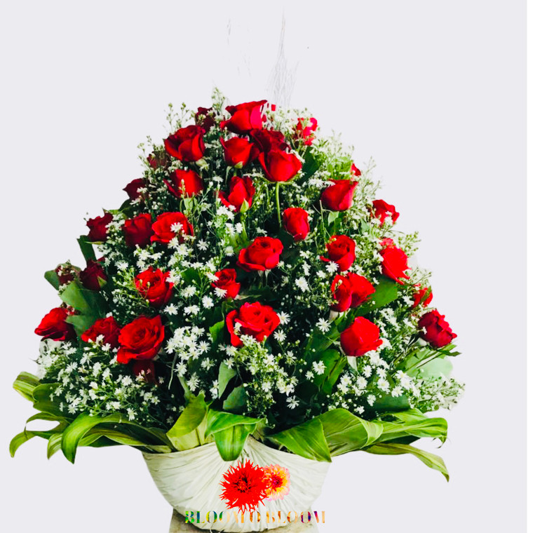 75 Red roses or white with baby's breath in a basket
