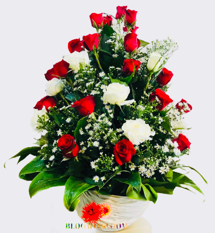 Red and white roses in a basket send to sri lanka