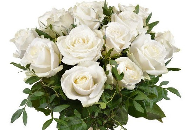 A Bunch of 12 beautiful white Roses