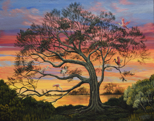 The Roseate Spoonbill adorns this live oak tree as the evening sun sets on the bayou.  This original painting is a 16x20.