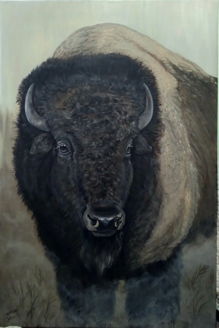 Bison- Early Morning Chill