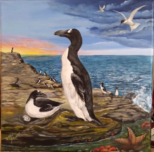 The Great Auk at Sunset