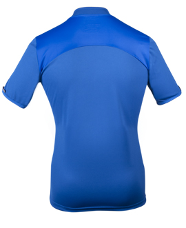 back view of recumbent jersey