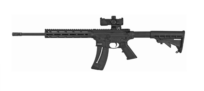 Smith & Wesson M&P15-22 Sport Red / Green Dot Optic 22 Long Rifle - (1) 25 Round Magazine
